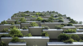 De Groene Stad