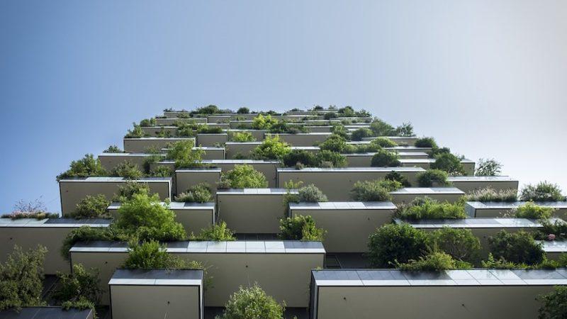 stedelijk groen